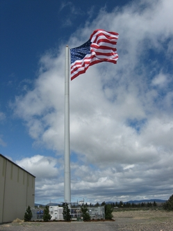 Flag Pole Cell Tower